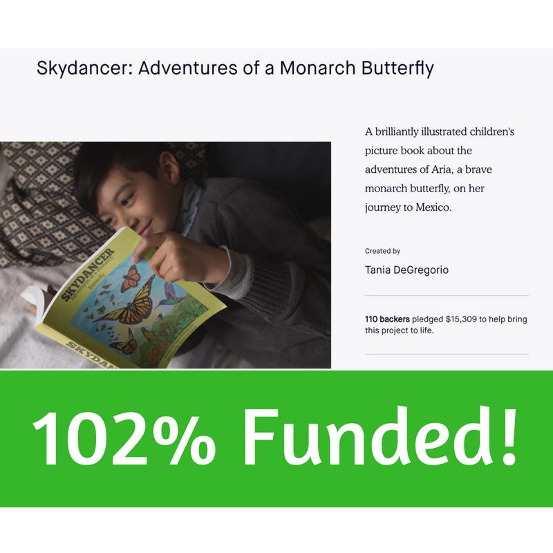 Saving Skydancer on Kickstarter