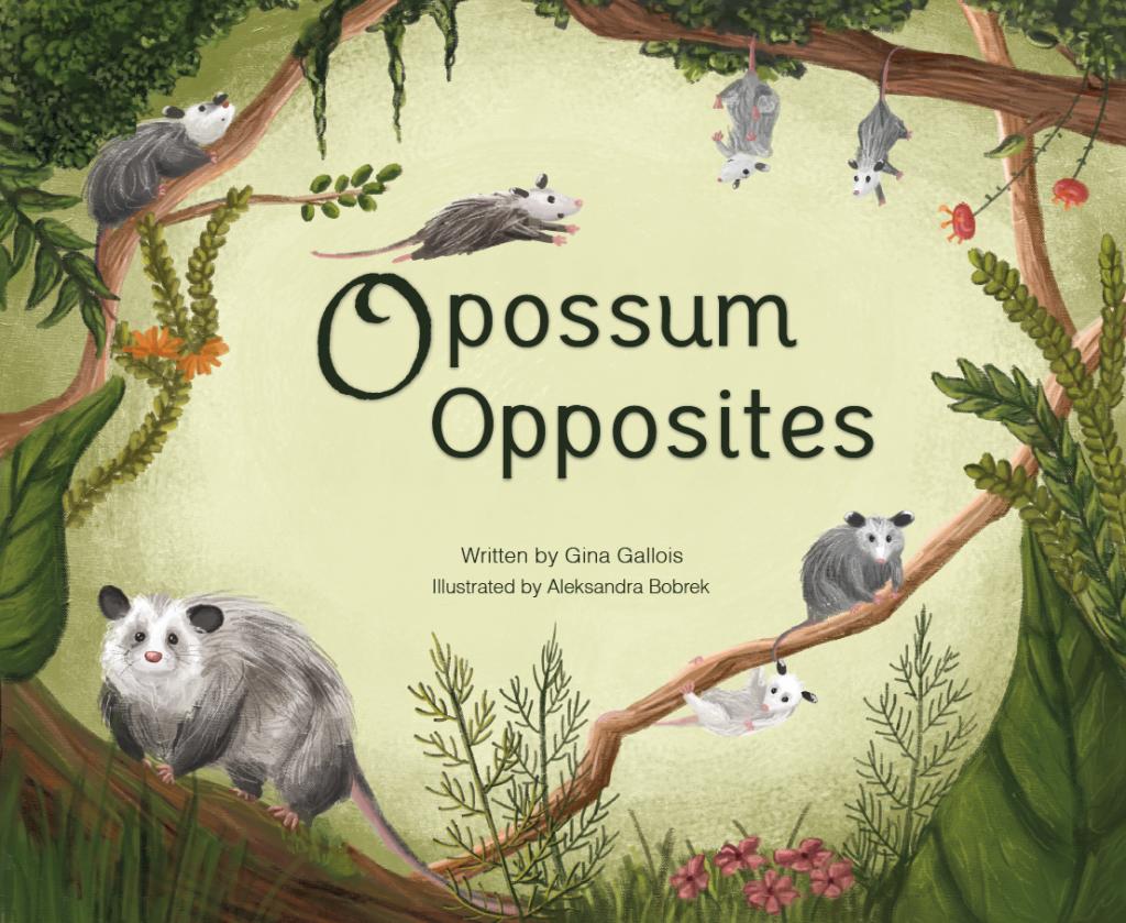 Opossum opposite cover square