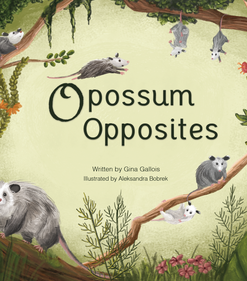 Animal lovers take over Kickstarter: Opossum Opposites by Gina Gallois