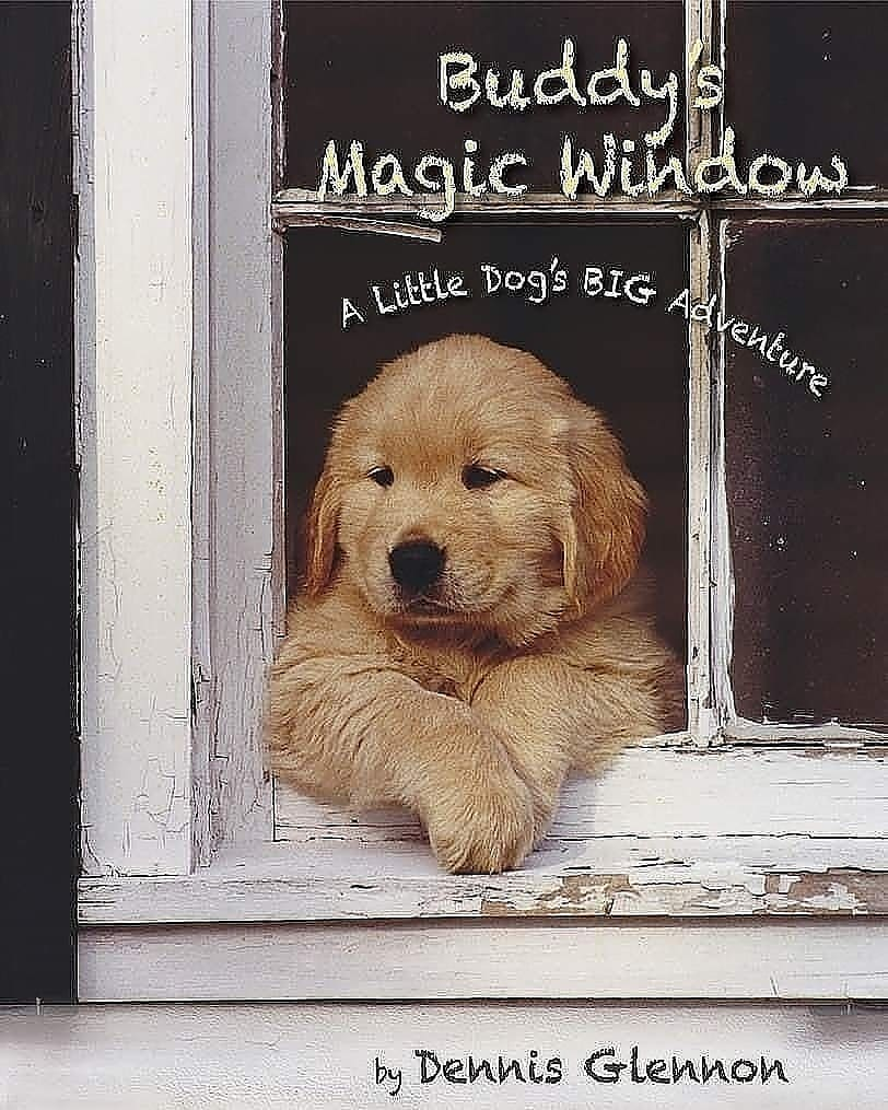 buddys magic window dennis glennon